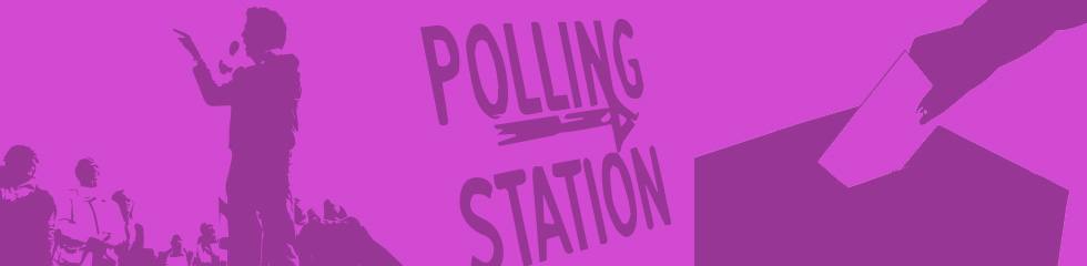 Parties and Voting banner